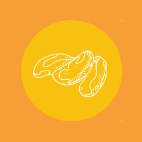 Parapähkinä icon